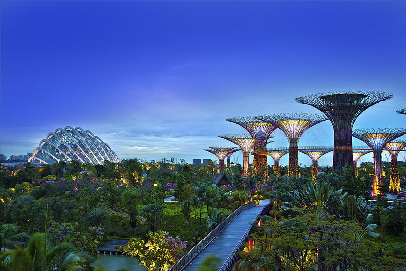 "Một góc ""Gardens by the Bay"""