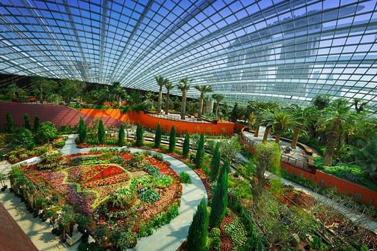 Một khu vườn trong Flower Dome